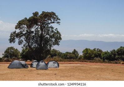 Group of green tents in a Safari camping site in the Tarangire National Park, Tanzania, Africa. Concept for adventurous travels, hiking in Africa, wild camping, sleep in the wild, sleeping under stars