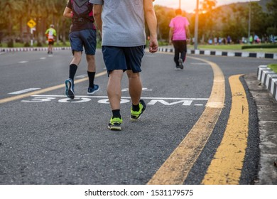 Group of healthy people exercise walking, jogging  on sunset in the park in evening