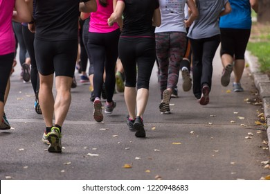 group of healthy people jogging in city park, runners team on morning training