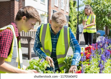 Group Of Helpful Teenagers Planting And Tidying Communal Flower Beds