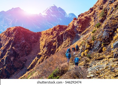 Group of Hikers male and female walking on Mountain Trail in Himalaya mixed grassy and rocky terrain carrying backpacks using trekking sticks rear View People are unrecognizable Sun above Peaks behind