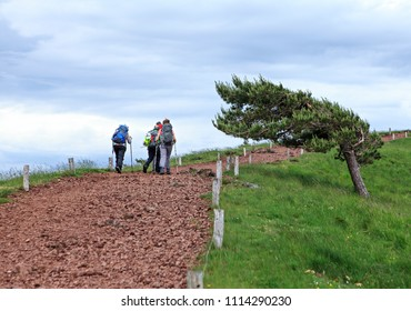 group of hikers on the path
