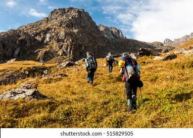 Group of hikers in Tien Shan mountains, central asia, Kyrgyzstan. Climbing and mountaineering concept.