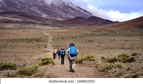 Group of Hikers Trekking Kilimanjaro Mountain, Kilimanjaro National Park, Tanzania