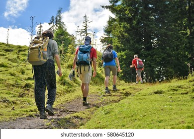 Group of hikers walking up an alpine trail
