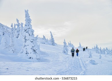 Group of hikers in winter mountains going up