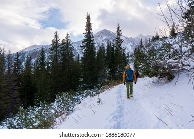 group of hikers in winter mountains in tatras mountain poland slovakia