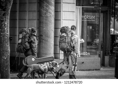 a group of homless and there dogs walking in downtown Olympia Washington on March 3 2018