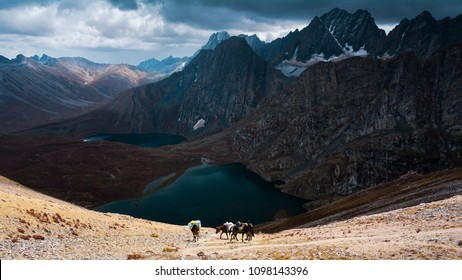 Group of horsemen with breathtaking view of Krishansar lake, Vishansar lake and big mountains under a cloudy weather from Gadsar Pass (4,080m), Kashmir The Great Lakes Trek, India.