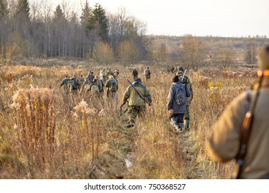 group of hunters during hunting in forest, chase hunting. Hunters walking in the forest. hunter on hunting in the fall. hunter at dawn.