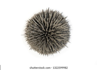 Group of iron filings show magnetic field lines over strong circle magnet. Close up of science magnetic field physics magnetic field.
