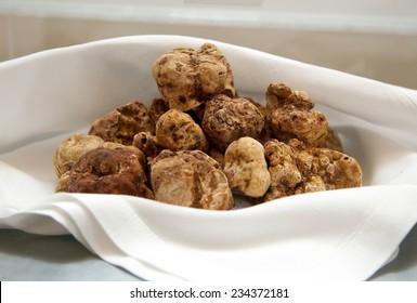 Group of Italian white truffles