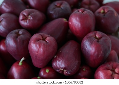 Group of Jambu Bol or Malay Apple (Syzygium Malaccense)