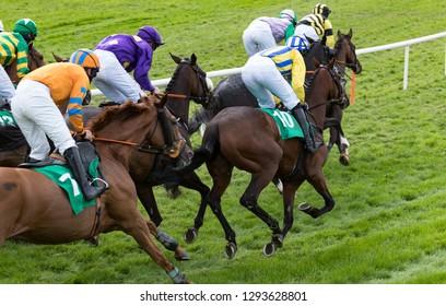 Group of jockeys and race horses racing towards the finish line
