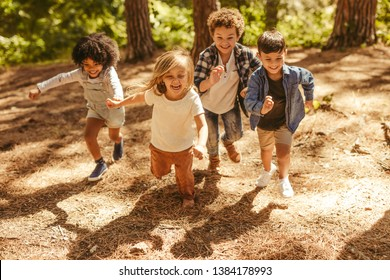 Group of kids running up in the forest. Multi-ethnic children playing together in forest.