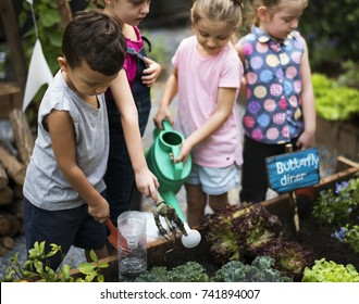 Group of kids watering the plants