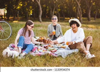 Group of laughing girls happily spending time on beautiful picnic with little dog in park