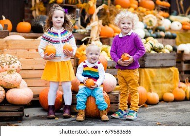 Group of little children enjoying harvest festival celebration at pumpkin patch. Kids picking and carving pumpkins at country farm on warm autumn day. Halloween and Thanksgiving time fun for family