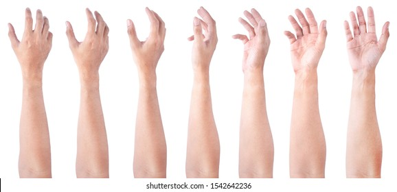 GROUP of Male asian hand gestures isolated over the white background. Soft Grab Action.