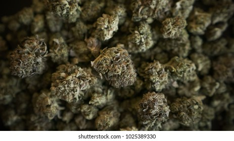 Group of marijuana buds