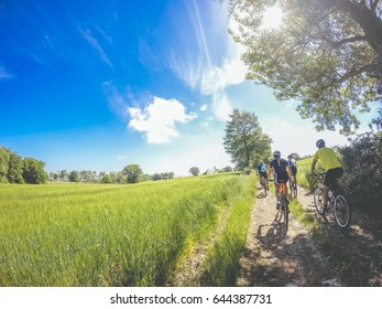 group of mountain biker on county road in a sunny day on county road in a summer.