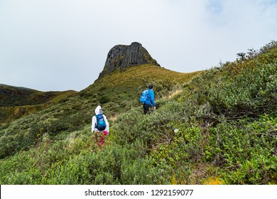 A group of mountaineers climbing the Cerro del Conde, Ecuador.
