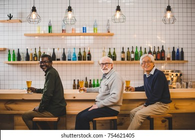 group of multiethnic senior friends drinking beer together