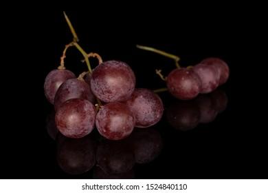 Group of nine whole fresh purple grape rose isolated on black glass