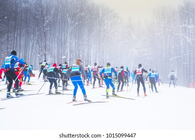 Group of nordic skier in professional race