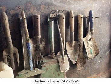group of old dirty farm metal garden tools as shovels and rakes hanging on the wall on nails in sepia