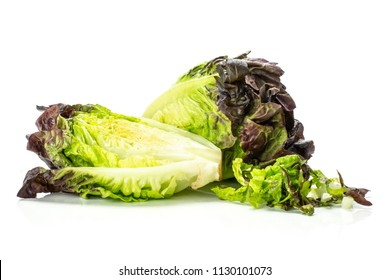 Group of one whole one half of fresh green lettuce red little gem variety with chopped heap isolated on white