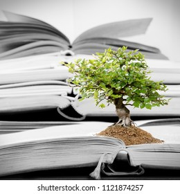 Group of opened books with tree growing from the soil; concept of knowledge and education