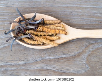 Group of Ophiocordyceps sinensis or mushroom cordyceps this is a herbs placed on wooden spoon on wooden background. on wooden table. National organic medicine.