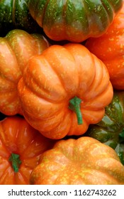 Group of orange and green pumpkins, closeup shot, seasonal background