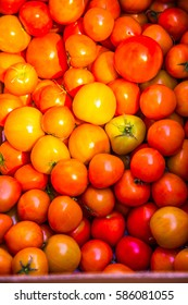 Group of orange tomatoes, Thailand.