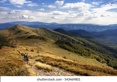 Group of paramilitary looking tourists walk in the mountains late afternoon in summer, Bieszczady Poland