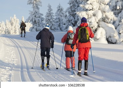 Group of people cross country skiing on beautiful winter morning