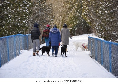 Group of people with dogs walking in snowy path