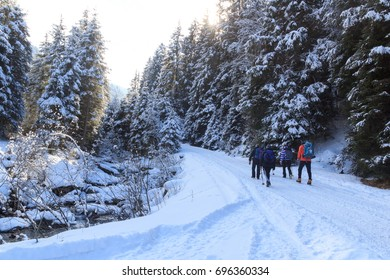 Group of people hiking on wintery snowy path in Stubai Alps mountains and small river, Austria