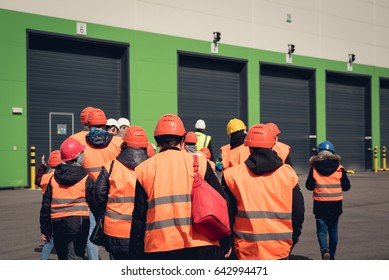 A group of people in orange helmets and reflective vests visiting factory or warehouse. From behind view.