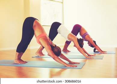Group of People Relaxing and Doing Yoga. Practicing Downward Dog. Wellness and Healthy Lifestyle.