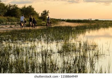 Group of people riding bicycles along baltic sea coast path , Jurmala, Latvia