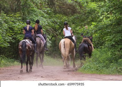 A group of people riding horses in the forest