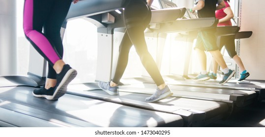 Group of people in sportswear running around on a treadmill. Cardio workout at the gym.