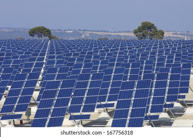 group of photovoltaic panels for renewable electric energy production