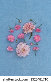 A group of pink roses on blue background