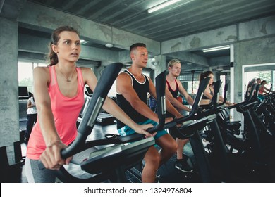 Group portrait of happy people working out at spinning class in gym doing sport biking in the gym for fitness