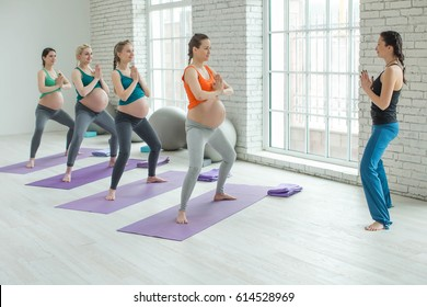 Group of pregnant women engaged in yoga