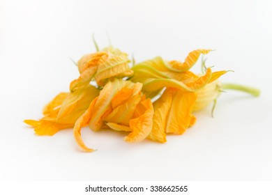 Group of pumpkin flowers isolated on white background