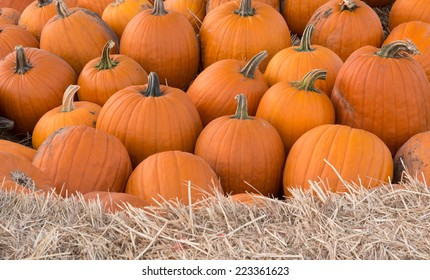 A group of pumpkins in sharp focus with a horizontal foreground of the top of a hay bale in soft focus.